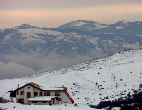 <h5>زیبایی فندقلو در برف</h5><br><div> ... </div>